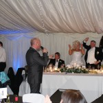 dj for parties - dj for birthday - wedding entertainment
